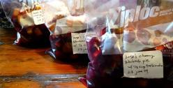 cherryrhubarbpiefilling