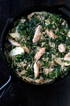 chicken-orzo-stew