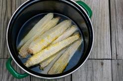 corncob-stock1-660