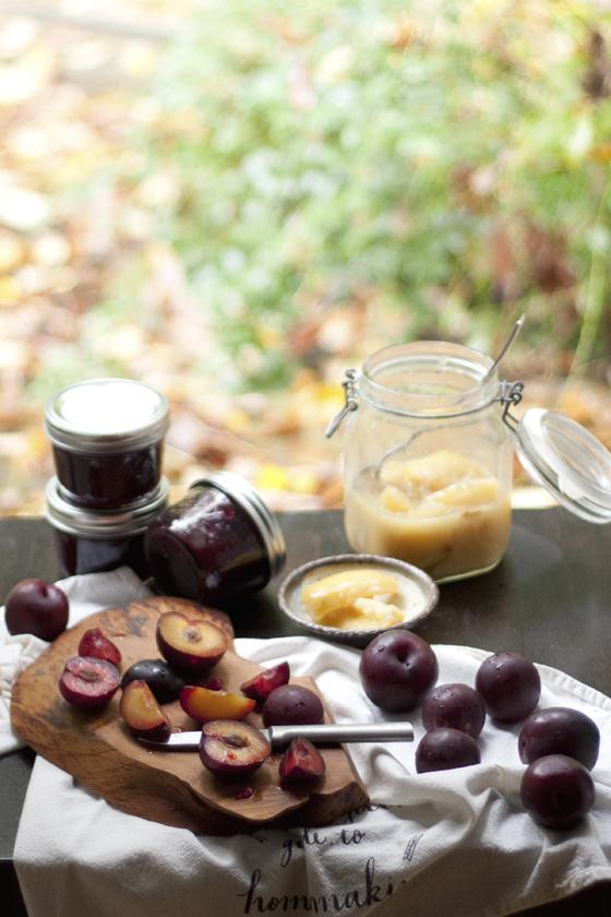 plum-jam-preserved-lemon