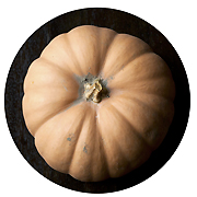 click for winter squash recipes