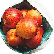 click for peach + nectarine recipes