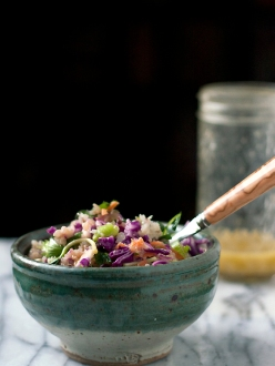quinoa-red-cabbage-salad